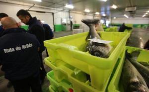 La pesca subastada en la lonja cae un 6% en los cuatro primeros meses
