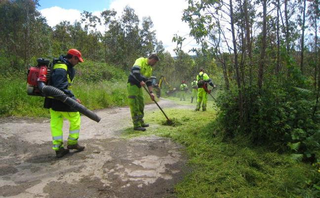 Carreño inicia un plan para el mantenimiento de las zonas verdes