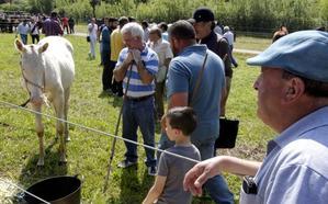 El alcalde admite que «ha perjudicado» retrasar la feria ganadera de La Ascensión