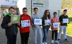 Educación ambiental, una asignatura más