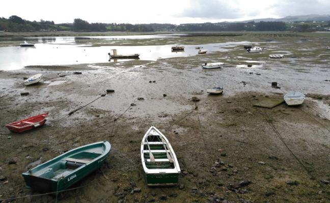 La ría del Eo se reabre al marisqueo de ostra tras más de un mes sin actividad