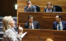 El Parlamento asturiano respalda una reforma legal para evitar el cierre de las térmicas