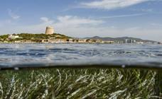 Ibiza se sacude los tópicos con gastronomía