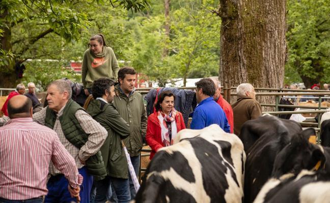 La ganadería de montaña recibirá más de dos millones de euros en ayudas