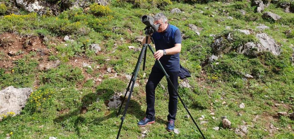 El presidente de Fade capta las imágenes de una osa y sus crías en Somiedo
