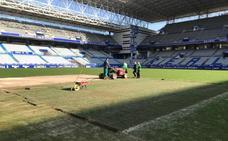 Real Oviedo   Obras de mejora en el césped del Tartiere