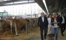 «Las explotaciones de carne sostienen más a la población en el medio rural»