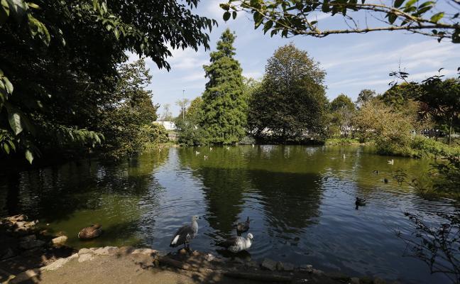 Ultimátum municipal a la firma contratada para dragar los estanques de Isabel la Católica