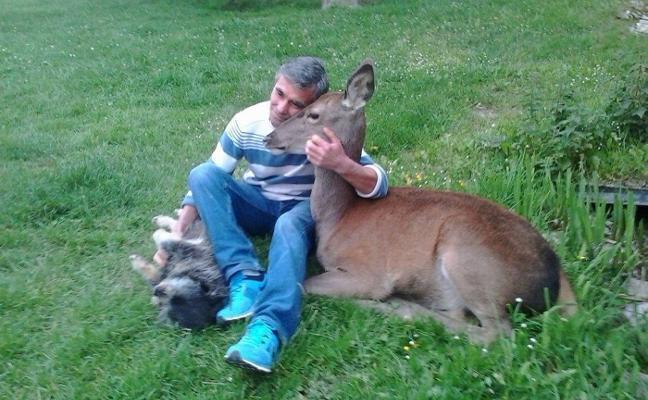 La 'Bambi' asturiana salta al cine
