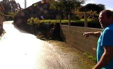 Herida de gravedad una anciana tras el ataque de dos perros en Pontevedra