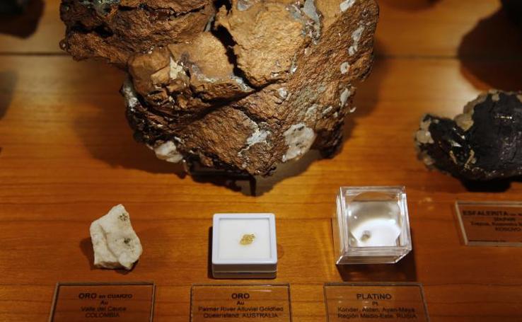 La facultad de Geología de Oviedo reabre su museo