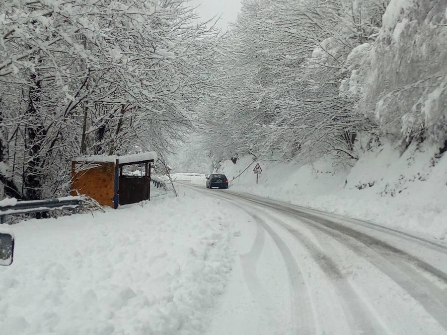 La nieve cubre el Suroccidente