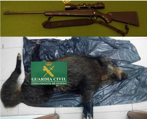 El arma intervenida y los animales hallados por la Guardia Civil.