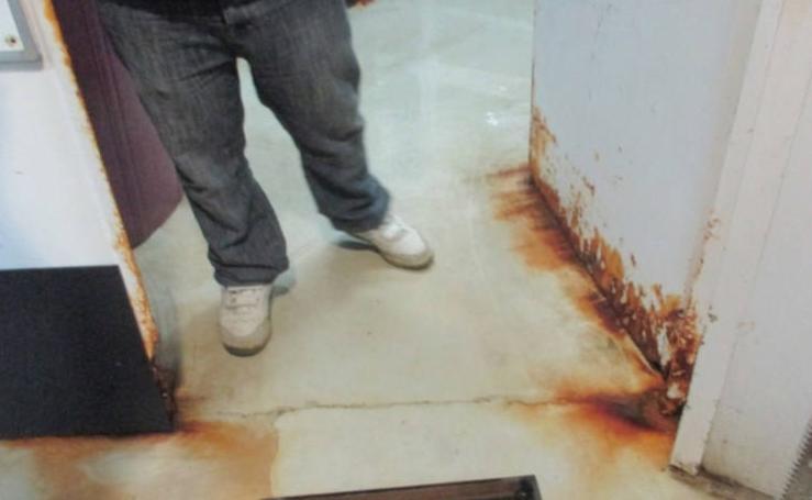 El deteriorado estado de las instalaciones del Acuario de Gijón