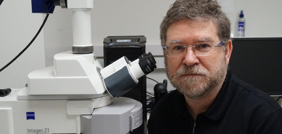 «El uso de virus para tratar el cáncer parecía ficción hace veinte años»