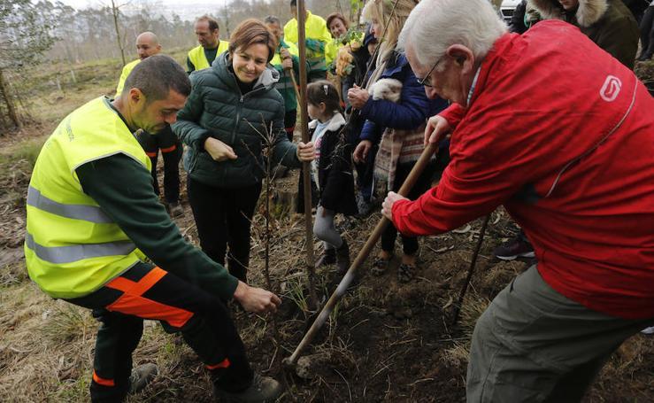 El día de los Bosques trae nuevos árboles para el Monte Deva