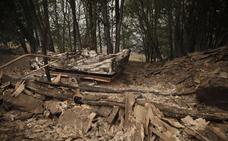 Piden que las zonas quemadas en octubre de 2017 se incluyan en las ayudas de la PAC