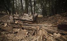 El anuncio de ayudas a zonas quemadas de Asturias dispara las críticas de los ecologistas