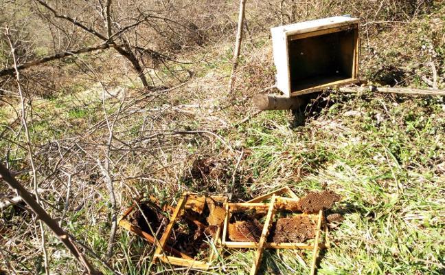 Un oso destroza colmenas en Jomezana de Arriba