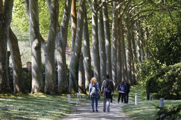 El Botanico Preve Inaugurar El Bioma Boreal Americano Y El Laberinto