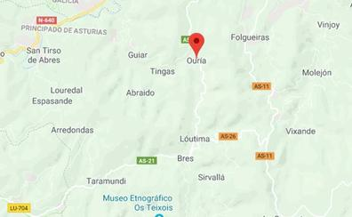 Fallece un trabajador forestal al caerle encima un árbol en Taramundi