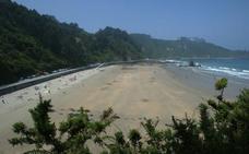 Asturias pierde tres banderas azules