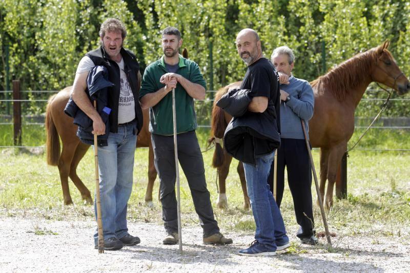 La Ascensión celebra su mercado de ganado en Olloniego