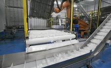 La asturiana Cubers se alía con Procubitos para crear el mayor grupo productor de hielo de Europa