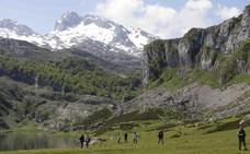 Los Picos pierden visitantes