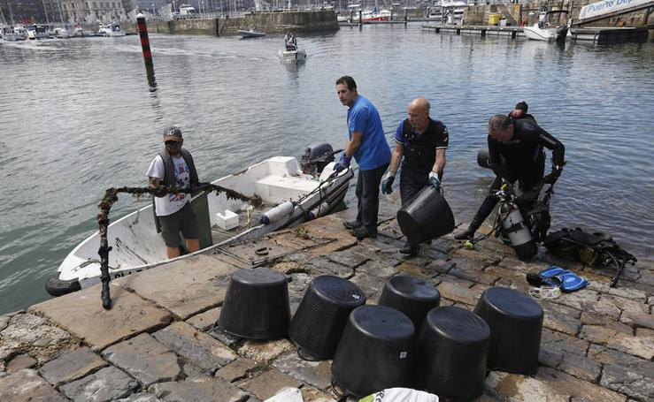 Limpieza de la darsena interior del Puerto Deportivo
