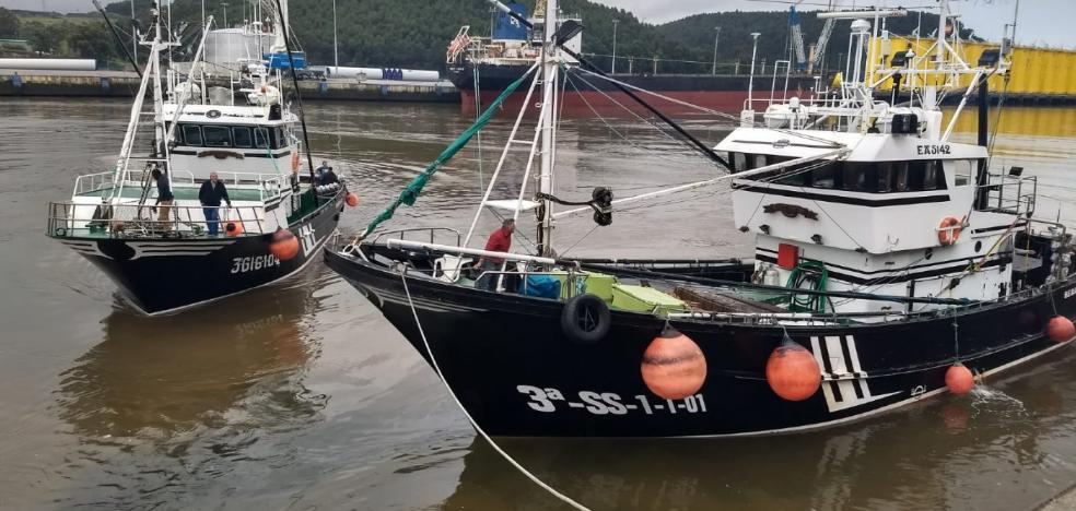 Los tres primeros barcos de la costera del bonito traen más de 7.000 kilos