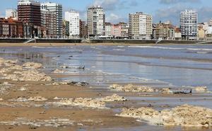 «San Lorenzo no tiene ningún problema sanitario ni de contaminación», asegura la alcaldesa