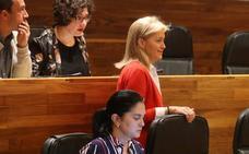 Cristina Coto dimite como presidenta y portavoz de Foro: «Llegó el momento de decir basta»