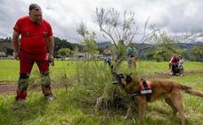 Exhibición en Ribadesella de perros que detectan veneno