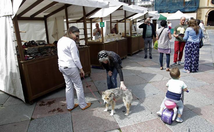 El Mercado de la Catedral arranca en Oviedo
