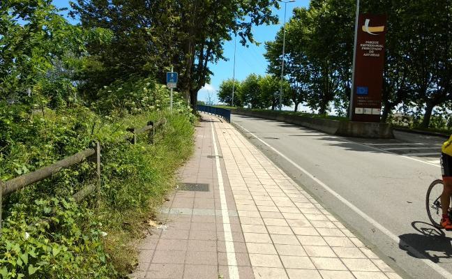 De senda peatonal a paseo natural