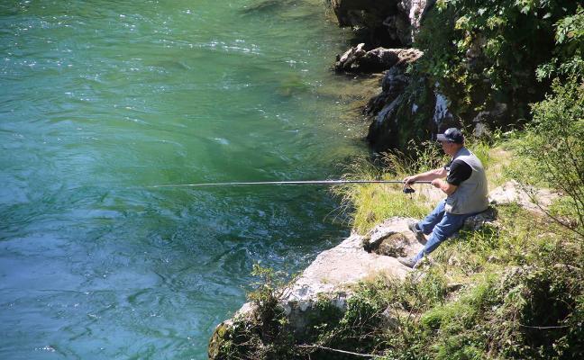 Los pescadores del Sella piden destinar más salmones a la repoblación del río
