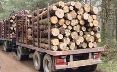 Vecinos de Brañaseca denuncian daños en la carretera por el transporte de madera