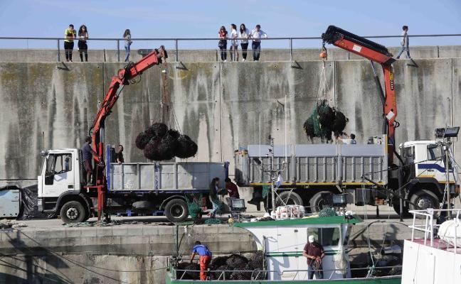 La amenaza de nuevos recursos marca el inicio del arranque de ocle en Llanes