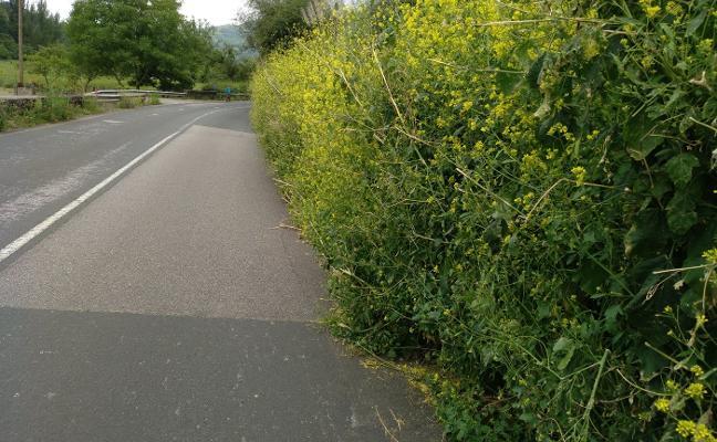 Alertan sobre el mal estado de la carretera entre Ujo y Pola de Lena