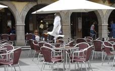 Los hosteleros piden medidas al Ayuntamiento de Avilés para atajar los daños por gaviotas y palomas