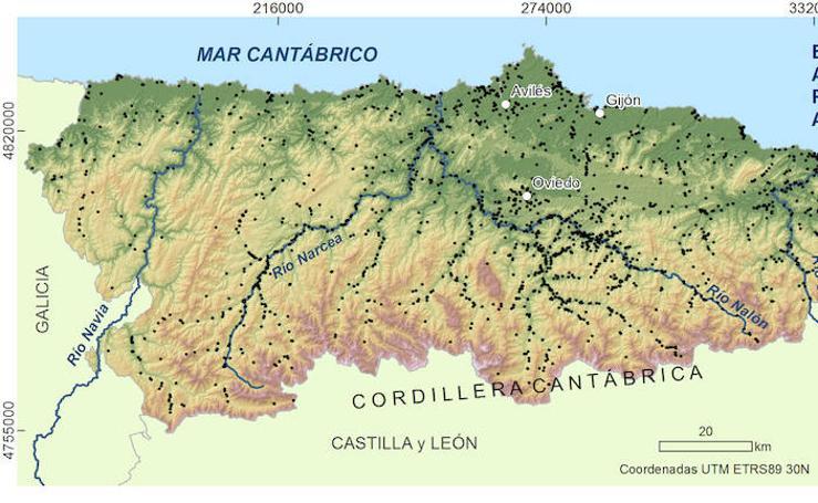 Argayos registrados en Asturias