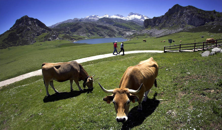 La espectacular belleza de los parques nacionales de España