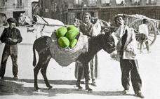 El melonero infalible