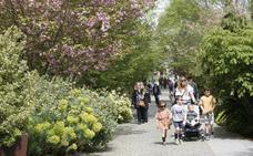 Divertia adjudicará a DN Seguridad la vigilancia en el Botánico para los próximos dos años