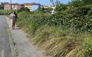 Jardín de Cantos reclama un plan integral de urbanización del barrio