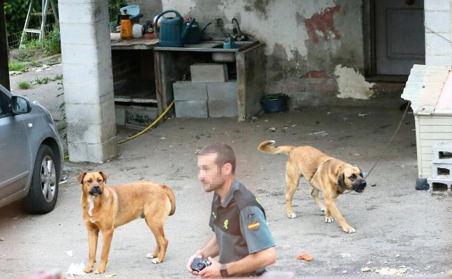 «Estoy destrozado, muy mal, éramos amigos y los perros lo querían con locura»