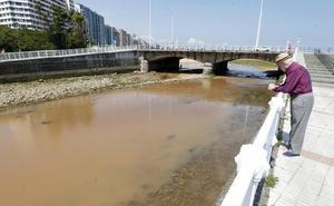 El temporal tiñe de marrón los ríos asturianos