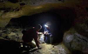 Los neandertales tenían más agudeza visual que el Homo sapiens