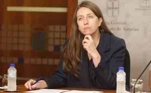 Podemos reclama que el proceso de transición energética ofrezca alternativas para Asturias
